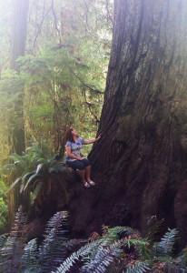 Angredwoodflippedshrunk